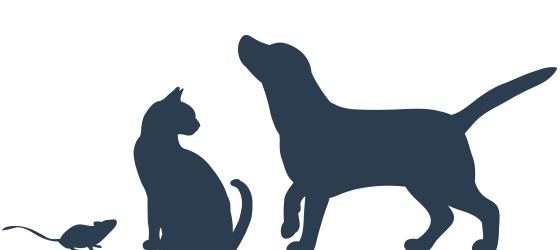 pets_we_treat_silhouette